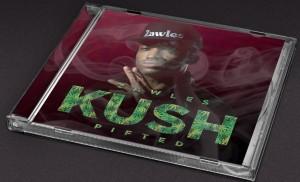 Album Perspective1 300x182 - Zawles - Kush Pifted
